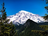 Mount-Rainier-July-2012